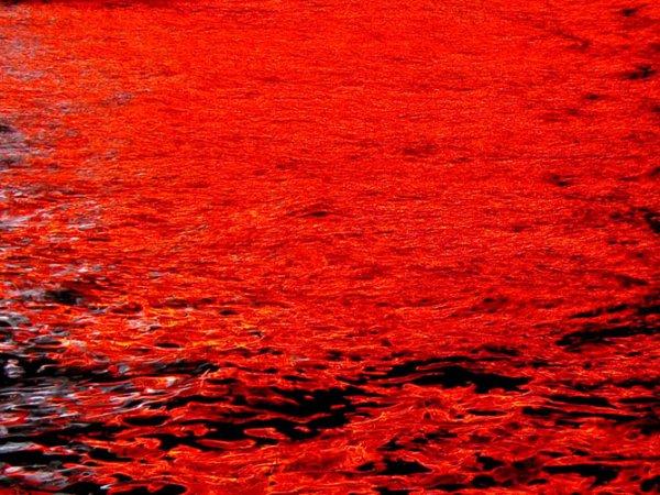 В Буэнос-Айресе местная река за ночь окрасилась в красный цвет
