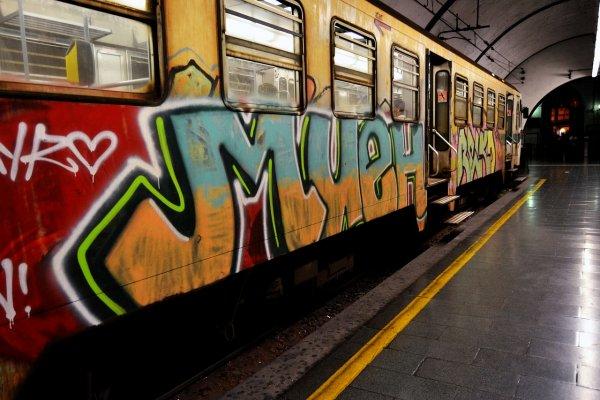 В Барселоне голые художники-вандалы разрисовали вагон метро