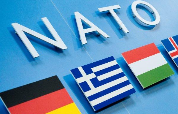 НАТО не собирается принимать Украину в свои ряды