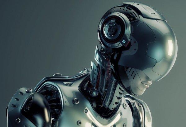 Замминистра Волин: Робот не сможет вытеснить хорошего журналиста