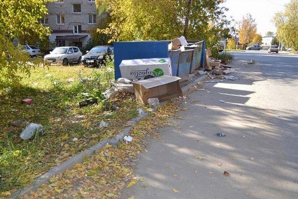 В Тобольске придумали, как эффективно бороться с несанкционированными мусорниками