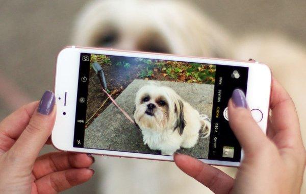 Новые iPhone оснастят съемной камерой повышенного качества