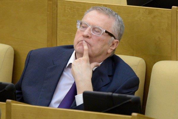 Владимир Жириновский объяснил, зачем ударил протестующего