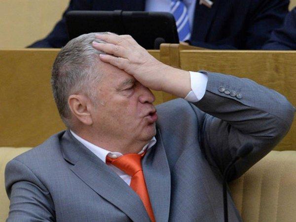 Элджей и Монеточка? Жириновский предлагает на 30% разнообразить новогоднюю программу