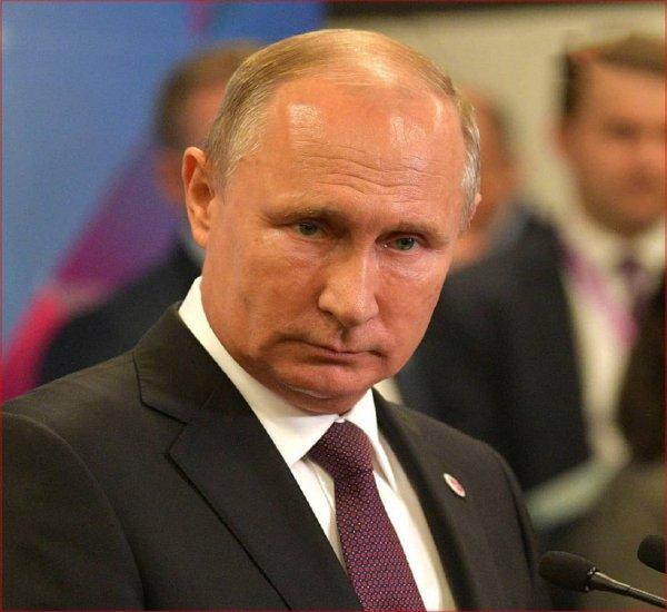 Путин прилетит в Петербург отмечать Рождество