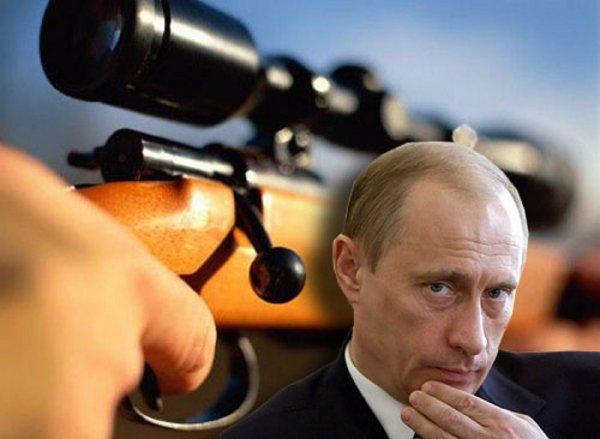 В Сербии задержан террорист, готовивший покушение на Путина