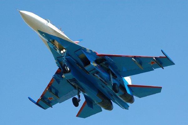 В Минобороны РФ показали на видео перехват шведского самолета-разведчика российским Су-27