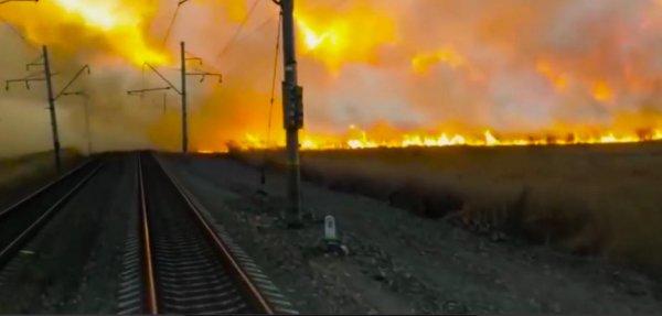«Потушит только Кожемяко»: Основная причина массовых пожаров в Приморье – восточные мигранты  - очевидцы