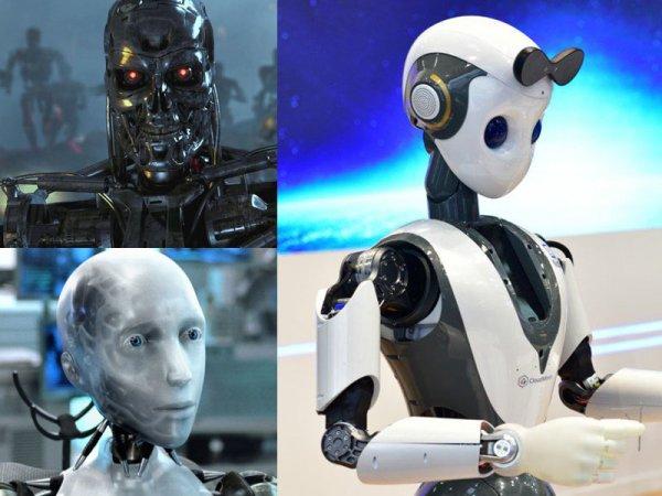 «Восстание машин?»: Компания запускает производство роботов с коллективным разумом