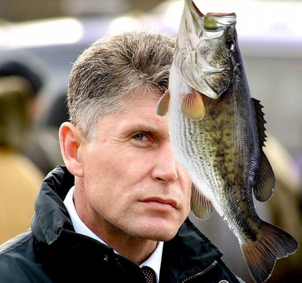 «Владивосток! А рыбы – нет…»: Приморцы возложили новые надежды на обещание Кожемяко