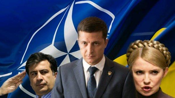 Тайный заговор?: Тимошенко может «протащить» Саакашвили к власти после победы Зеленского