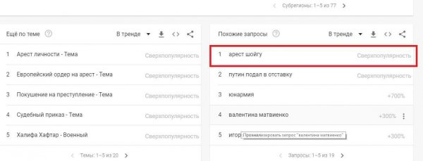 «Арест Шойгу»: Информацию о задержании министра обороны России массово ищут в Google
