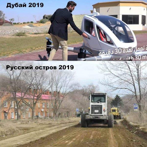 «Вечность пахнет рыбой»: Гуменюк беспокоится о дорогах Владивостока, пока Кожемяко спасает касаток