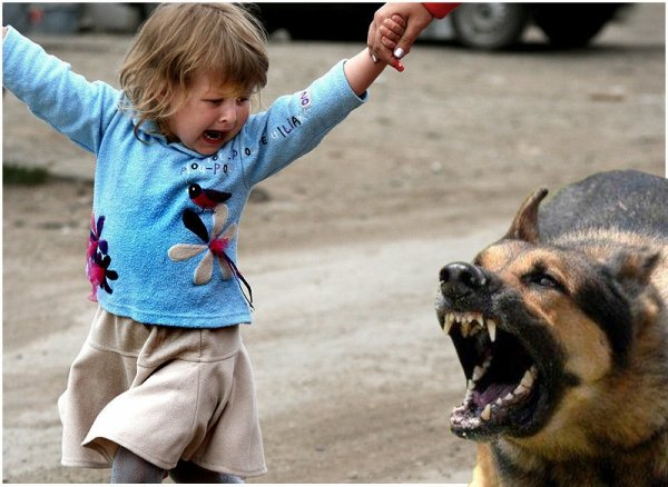 «Страх на всю жизнь»: Жириновский проговорился о детской травме, навсегда изменившей политика
