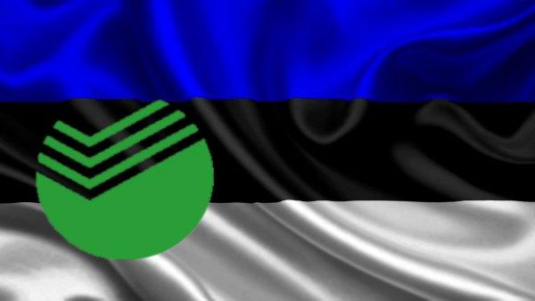 Эстонская «черепаха» у русских ворот: За сбоями в работе Сбербанка могут стоять кураты из НАТО