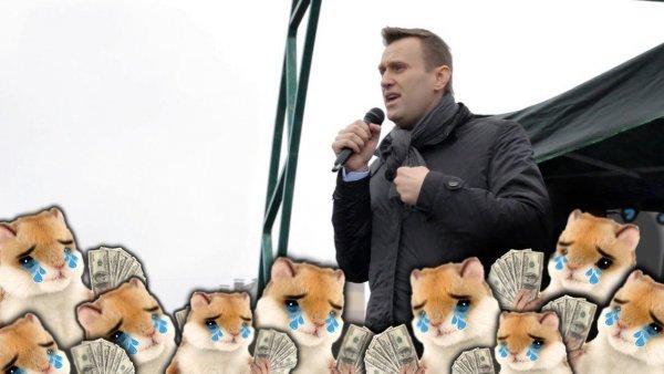 «Хомячки» столько не заплатят. Громкие расследования Навального щедро оплачивались биткоинами