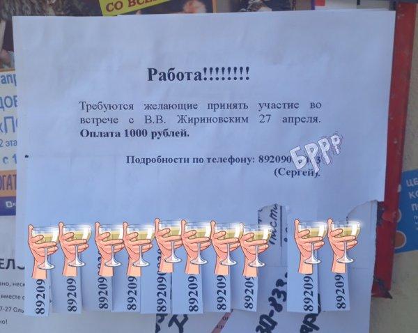 Хотели подставить: Владимирцев одурачили «заработком» 1000 рублей на массовке для визита Жириновского – Сеть