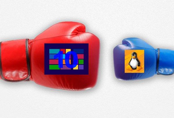 Linux может стать первым? Большой объём Windows 10 может нарушить работу жёсткого диска