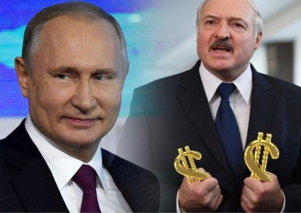 Проворный бацька: Лукашенко может требовать от России многомиллионную «компенсацию», чтобы скрыть хищения на «Дружбе»