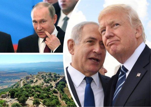 Путинград на Святой земле: Президент РФ заслужил не меньше Трампа увековечивания в Израиле - Сеть