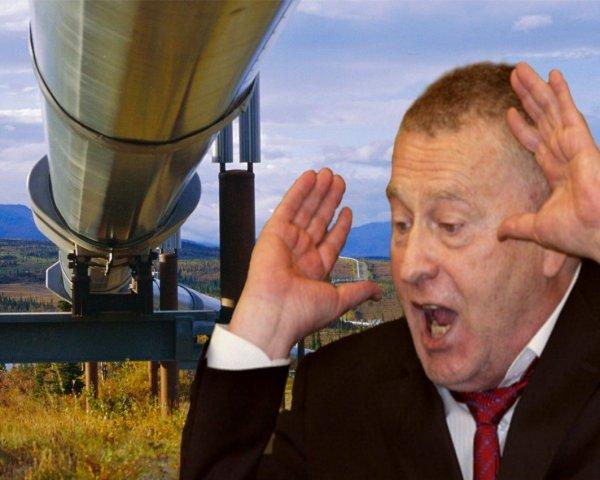 Европа испугается и побежит к Америке: Жириновский допустил, что США могут взорвать российскую нефть в Украине