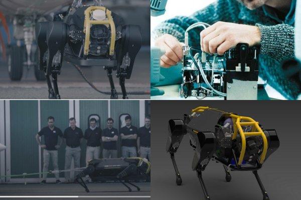 Четырёхногий робот HyQReal способен сдвинуть 3-тонный самолёт пассажирский самолёт