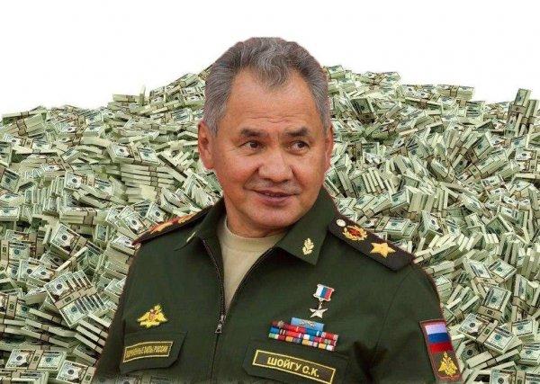 Правду о миллионах Шойгу раскрыла налоговая служба