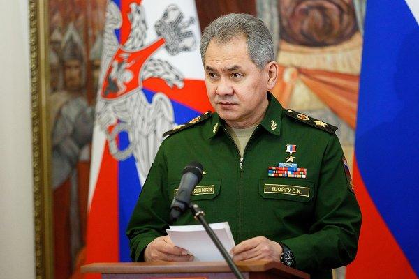 Шойгу рассказал об отмене призыва в российскую армию