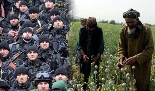 Спецназ Кадырова готов перерезать канал поставки наркотиков из Афганистана