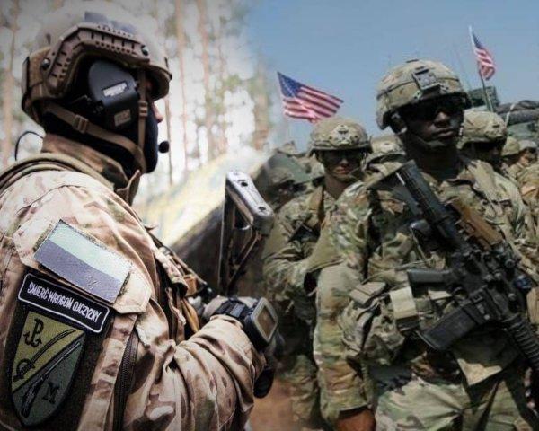 Польские коммандос GROM сделали в Афганистане всю работу «морских котиков»
