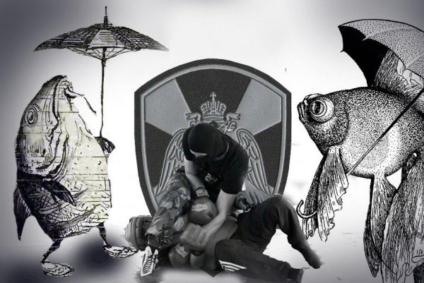 «Как рыбке зонтик...»: Росгвардия откажется от спаррингов для начинающих бойцов ОМОН – эксперт