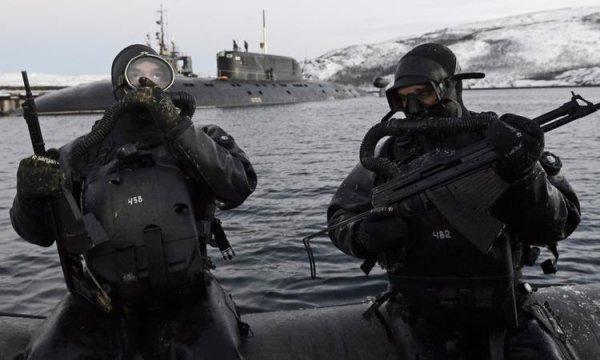 Круче чем «морские котики»: ВМФ создаёт отряды подводного спецназа вАрктике
