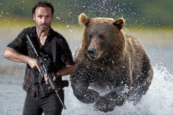 «Береги зад»: Минприроды опубликовало правила поведения при встрече с медведем на охоте