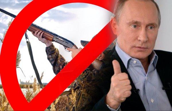 Разрешить «Детскую охоту»!  ГосДума легализовала расстрел диких животных в вольерах