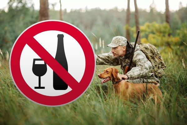 «Охото охоты? Не бухай!»: Правила получения лицензии могут ужесточить из-за вредных привычек россиян